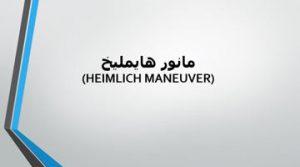 دانلود پاورپوینت مانور هایملیخ در ۱۱ اسلاید قابل ویرایش